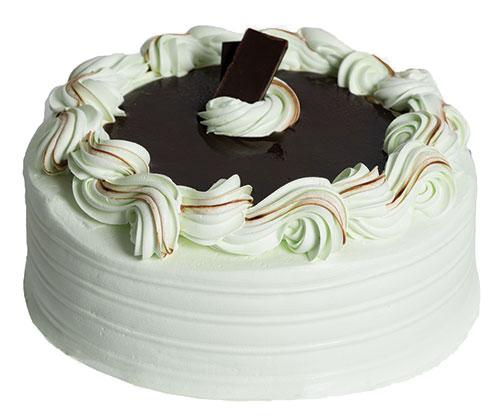 Mint Chip Truffle Cake