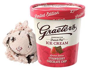 Strawberry Chocolate Chip Ice Cream