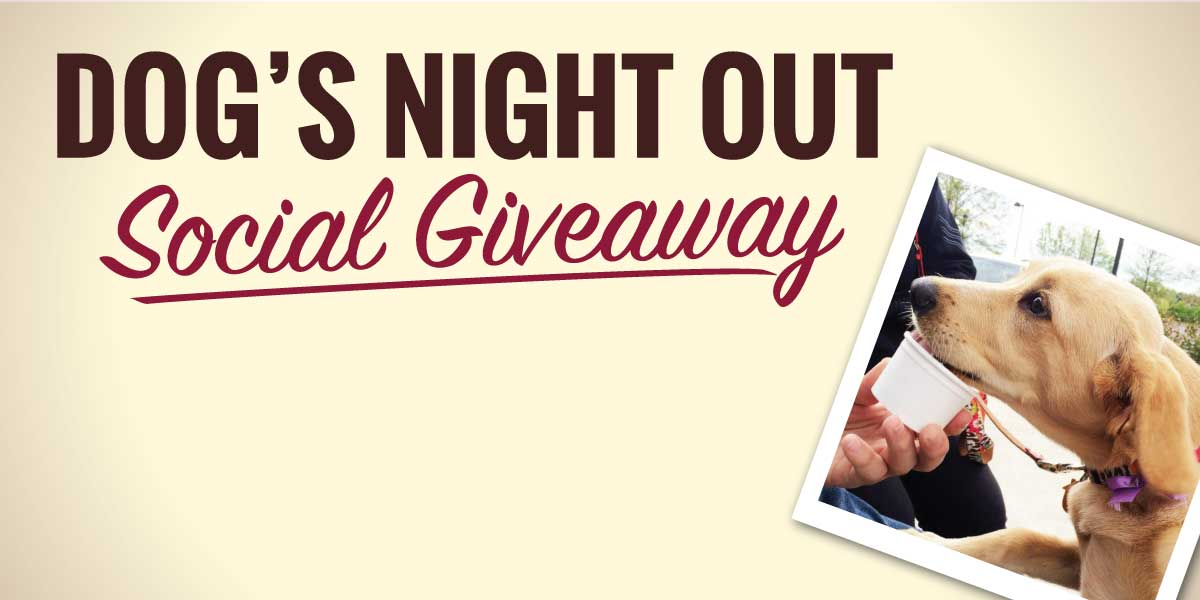 Graeter's Dogs Night Out Giveaway
