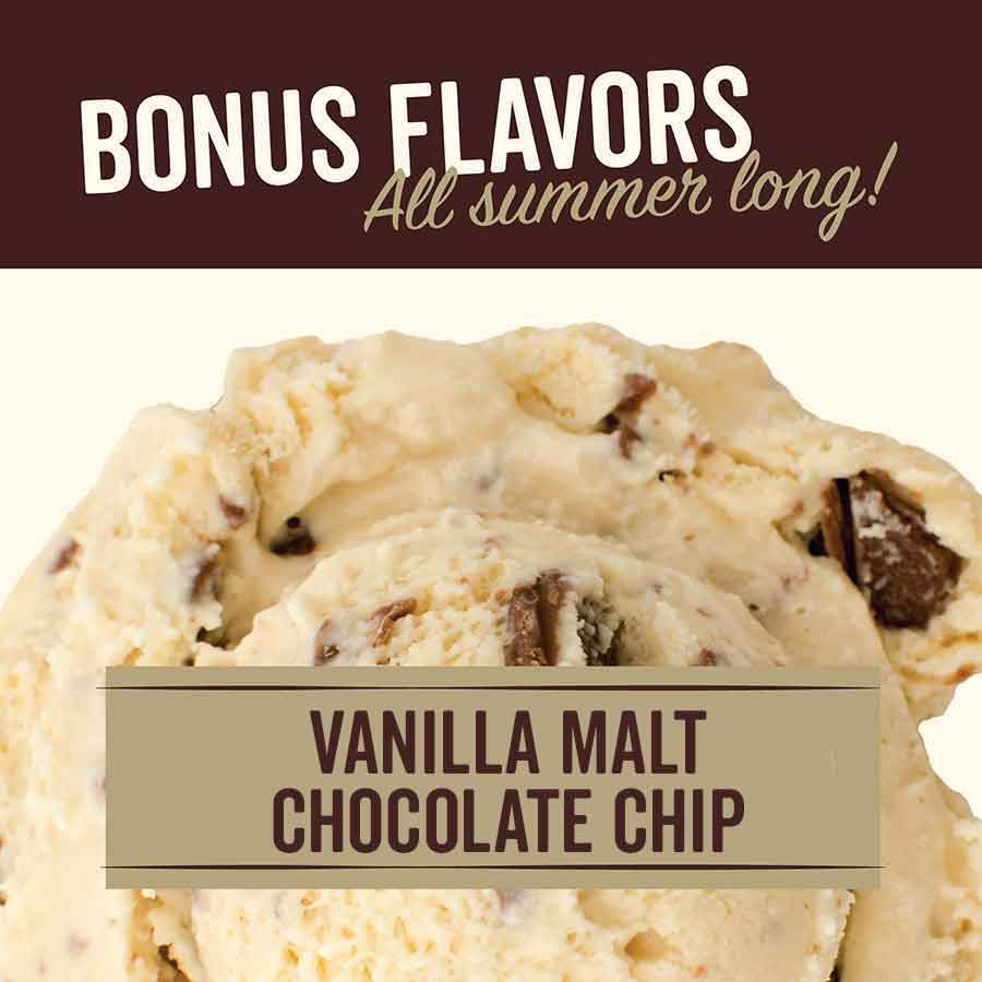 Vanilla Malt Chocolate Chip Ice Cream